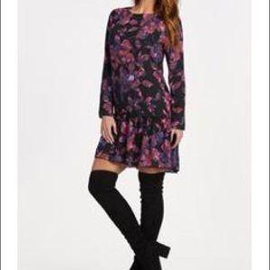 Evereve Dresses - Evereve Allison Joy Long Sleeve Floral Dress